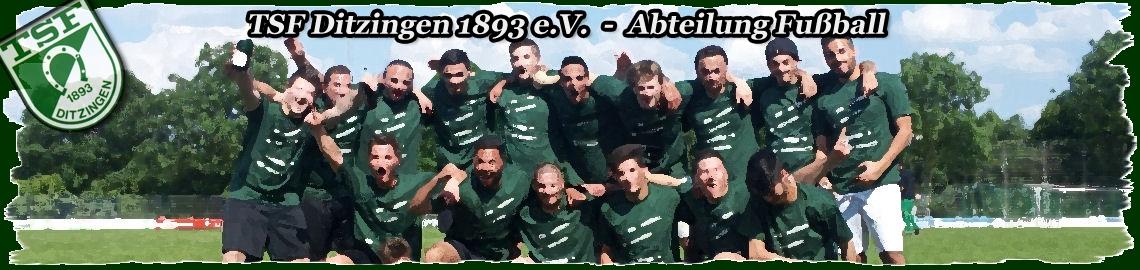 TSF Ditzingen 1893 e.V. – Vereinsseite Abteilung Fussball