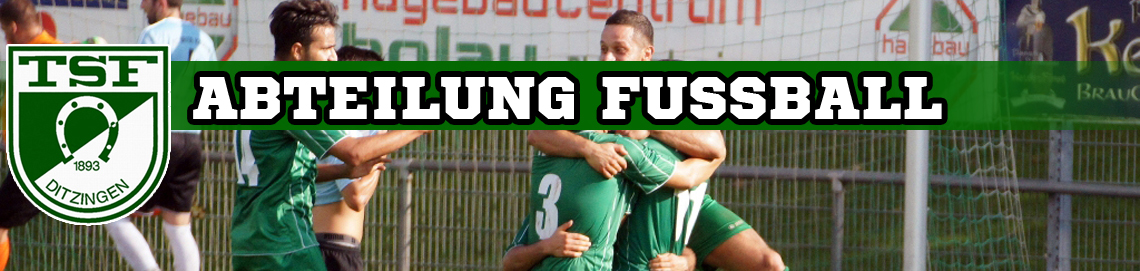 TSF Ditzingen 1893 e.V. – Abteilung Fussball